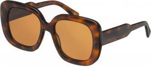 Chimi Eyewear #10 Tortoise/Gradient Brown